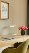 Schreibtisch - Alpine Suite