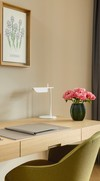 Schreibtisch - Executive Suite